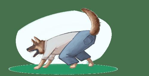 Psí škola Koira, problémový pes